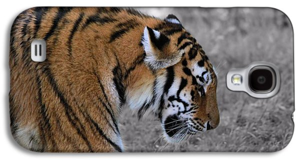 The Tiger Galaxy S4 Cases - Stalking Tiger Galaxy S4 Case by Dan Sproul