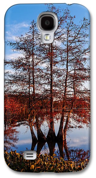 Stand Of Bald Cypress Trees At Ba Steinhagen Lake In Martin Dies Jr State Park - Jasper East Texas Galaxy S4 Case by Silvio Ligutti