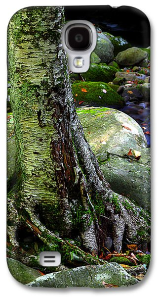 Tree Roots Galaxy S4 Cases - Standing Along The Stream Galaxy S4 Case by Michael Eingle