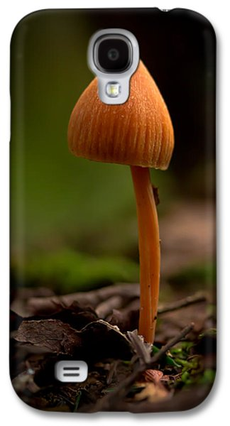 Toadstools Galaxy S4 Cases - Standing Tall In The Land Of Small Galaxy S4 Case by Shane Holsclaw