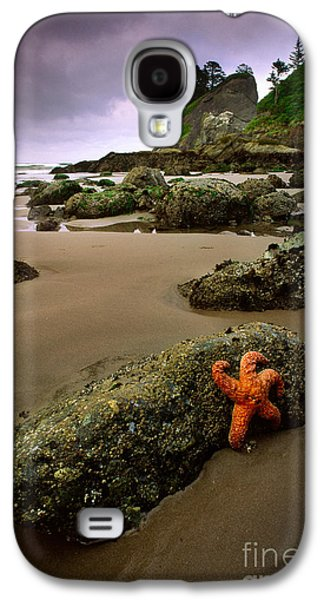 Harmonious Galaxy S4 Cases - Starfish on the Rocks Galaxy S4 Case by Inge Johnsson