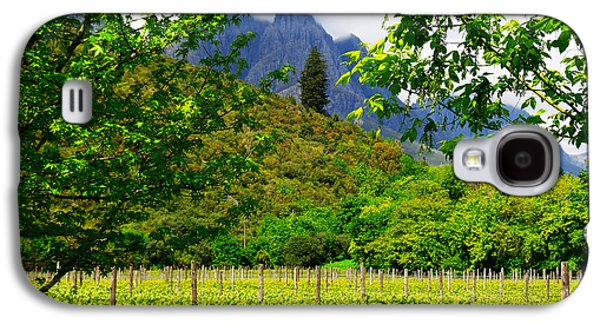 Stellenbosch Galaxy S4 Cases - Stark Conde Wine Estate Stellenbosch South Africa 4 Galaxy S4 Case by Charl Bruwer