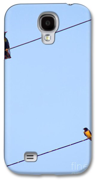 Hirundo Rustica Galaxy S4 Cases - Starling And Swallow Galaxy S4 Case by Tim Holt