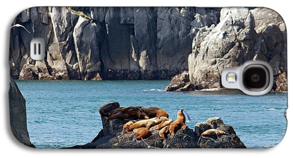 Steller Sea Lions On Coastal Rocks Galaxy S4 Case by Jim West