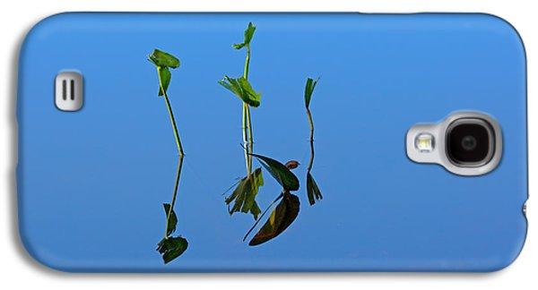 Weed Line Galaxy S4 Cases - Still Galaxy S4 Case by Karol  Livote