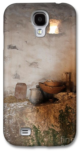Elizabeth Carr Galaxy S4 Cases - Still Life with Basket Galaxy S4 Case by Elizabeth Carr