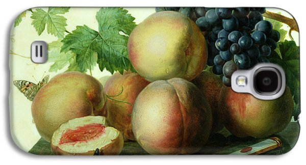 Posters On Paintings Galaxy S4 Cases - Still Life with Peaches and Grapes on Marble Galaxy S4 Case by Jan Frans van Dael