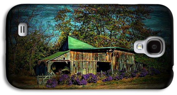 Indiana Scenes Galaxy S4 Cases - Still Picturesque Galaxy S4 Case by Julie Dant
