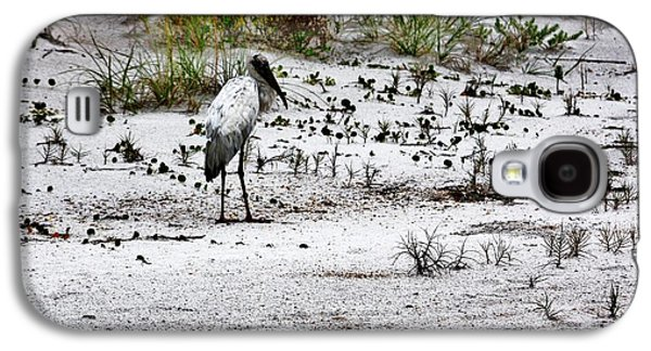 Beach Landscape Galaxy S4 Cases - Stork In Dunes Galaxy S4 Case by Chuck  Hicks