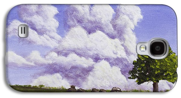 Maine Meadow Galaxy S4 Cases - Storm Clouds Over Maine Blueberry Field Galaxy S4 Case by Keith Webber Jr