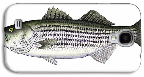 Striped Bass Galaxy S4 Case by Charles Harden