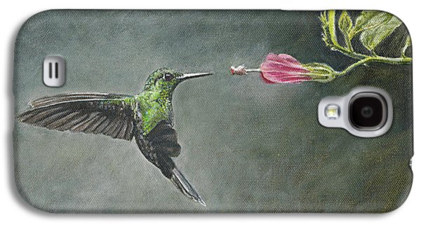 Stripes Paintings Galaxy S4 Cases - Striped Tailed Hummingbird Galaxy S4 Case by Rob Dreyer AFC