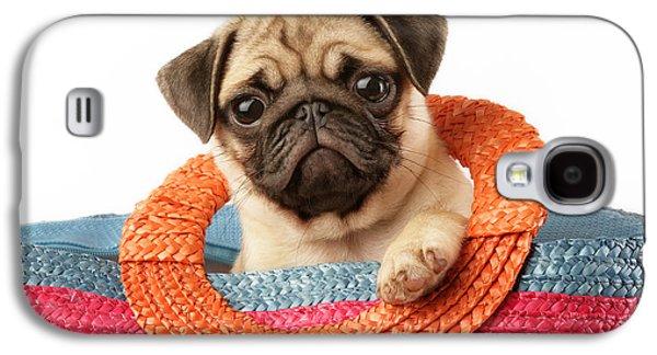 Puppies Galaxy S4 Cases - Stuck Pug Galaxy S4 Case by Greg Cuddiford