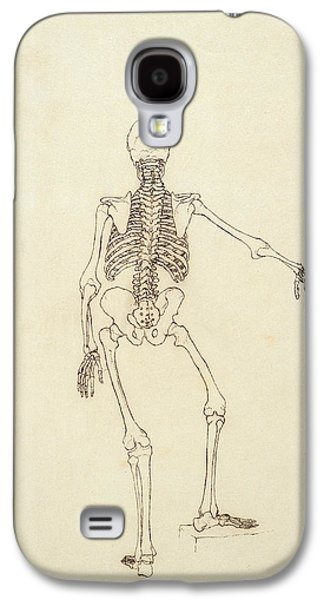 Drawing Galaxy S4 Cases - Study Of The Human Figure, Posterior View, From A Comparative Anatomical Exposition Galaxy S4 Case by George Stubbs