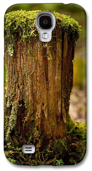 Moss Galaxy S4 Cases - Stump Galaxy S4 Case by Shane Holsclaw