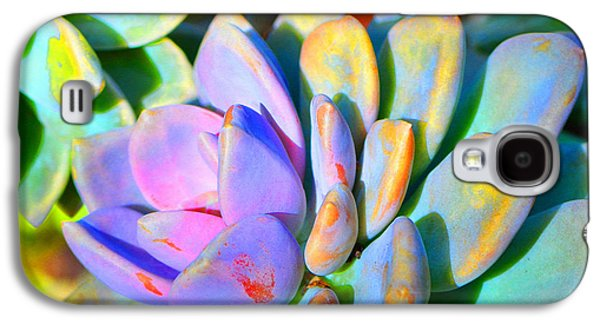 Gardening Photography Galaxy S4 Cases - Succulent Color - Botanical Art by Sharon Cummings Galaxy S4 Case by Sharon Cummings