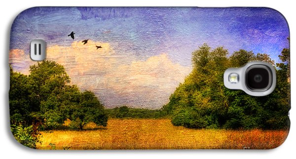 Rural Scenes Digital Galaxy S4 Cases - Summer Country Landscape Galaxy S4 Case by Lois Bryan