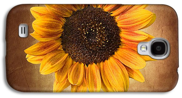 Summer Sunflower Galaxy S4 Case by Cindy Singleton