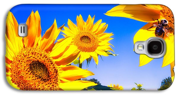 Sunflower Field Galaxy S4 Cases - Summertime Sunflowers Galaxy S4 Case by Bob Orsillo