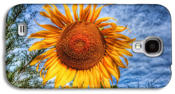 Stigma Galaxy S4 Cases - Sun Flower Galaxy S4 Case by Adrian Evans