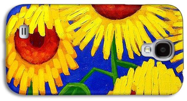 Ireland Galaxy S4 Cases - Sun Lovers Galaxy S4 Case by John  Nolan