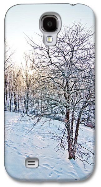 Surreal Landscape Pyrography Galaxy S4 Cases - Sun Over A Snowy Day Galaxy S4 Case by Shirley Tinkham