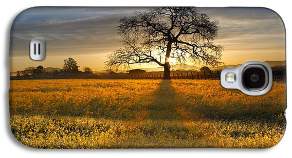 Sonoma County Vineyards. Galaxy S4 Cases - Sun Rise Oak in Yellow Mustard Galaxy S4 Case by Stan Angel