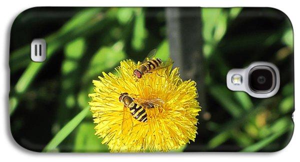 Fauna Pyrography Galaxy S4 Cases - Sun Summer Galaxy S4 Case by Yury Bashkin