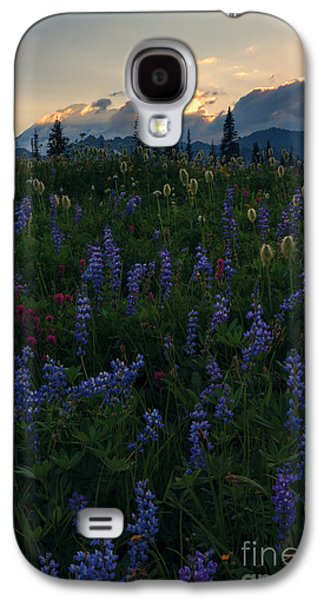 Sunbeams Galaxy S4 Cases - Sunbeams over Rainier Galaxy S4 Case by Mike  Dawson