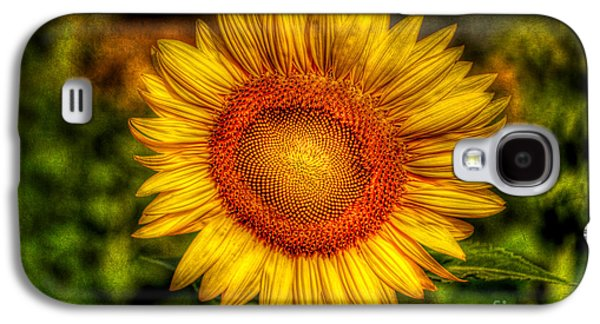 Stamen Digital Galaxy S4 Cases - Sunflower Galaxy S4 Case by Adrian Evans