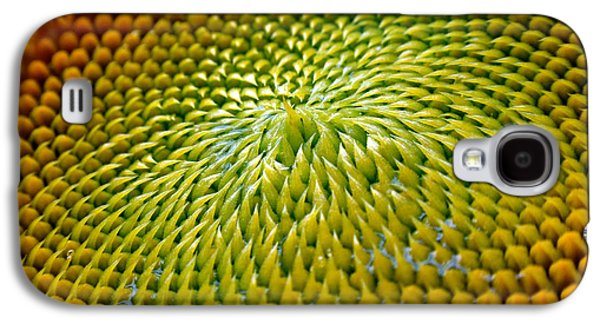 Sunflower  Galaxy S4 Case by Christina Rollo