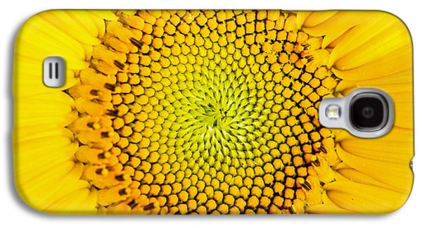 Sunflower  Galaxy S4 Case by Edward Fielding
