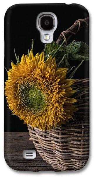 Bloosom Galaxy S4 Cases - Sunflower in a basket Galaxy S4 Case by Edward Fielding
