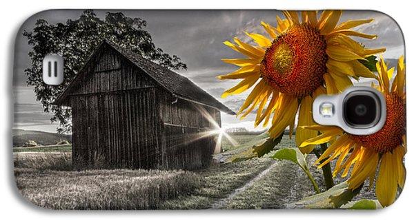 Tennessee Barn Galaxy S4 Cases - Sunflower Watch Galaxy S4 Case by Debra and Dave Vanderlaan