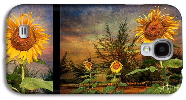 Stigma Galaxy S4 Cases - Sunflowers Galaxy S4 Case by Adrian Evans