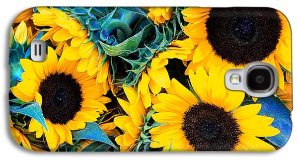 Botanical Galaxy S4 Cases - Sunflowers Galaxy S4 Case by Colleen Kammerer