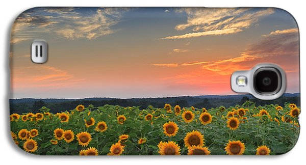 Connecticut Landscape Galaxy S4 Cases - Sunflowers in the evening Galaxy S4 Case by Bill  Wakeley
