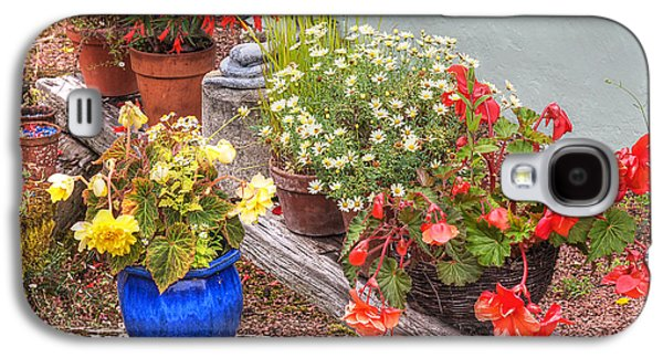 Garden Scene Galaxy S4 Cases - Sunken Kaleidoscope Garden Galaxy S4 Case by Gill Billington