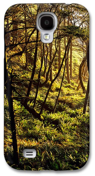 Sunlight On Fern Plants Growing In Galaxy S4 Case by Panoramic Images