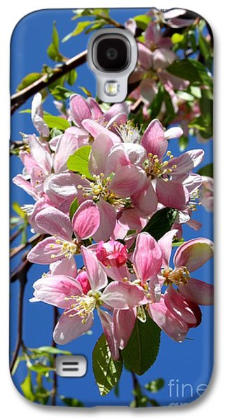 Cherry Blossoms Galaxy S4 Cases - Sunlight on Spring Blossoms Galaxy S4 Case by Carol Groenen
