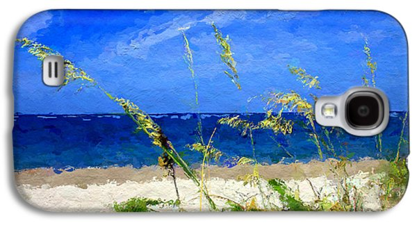 Seascape Galaxy S4 Cases - Sunlit Beachgrass Galaxy S4 Case by Anthony Fishburne