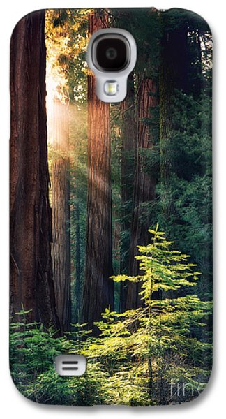 Best Sellers -  - Ancient Galaxy S4 Cases - Sunlit from Heaven Galaxy S4 Case by Jane Rix