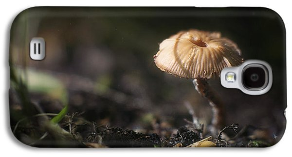 Forest Floor Galaxy S4 Cases - Sunlit Mushroom Galaxy S4 Case by Scott Norris