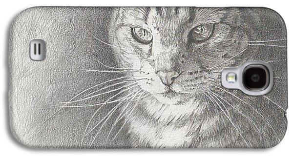 Contemplative Drawings Galaxy S4 Cases - Sunlit Tabby Cat Galaxy S4 Case by Victoria Lisi