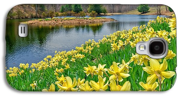 Connecticut Landscape Galaxy S4 Cases - Sunny Daffodil Galaxy S4 Case by Bill  Wakeley