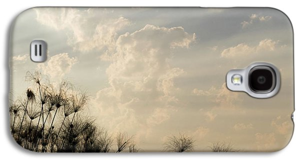 Sunrays Above Papyrus Plants, Okavango Galaxy S4 Case by Panoramic Images