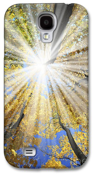 Light Galaxy S4 Cases - Sunrays in the forest Galaxy S4 Case by Elena Elisseeva