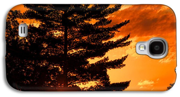 Sun Galaxy S4 Cases - Sunset and Pine Tree  Galaxy S4 Case by Olivier Le Queinec