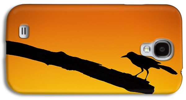 Sunset Grackle Silhouette Galaxy S4 Case by Andres Leon