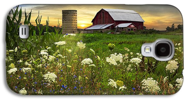 Sunset Lace Pastures Galaxy S4 Case by Debra and Dave Vanderlaan